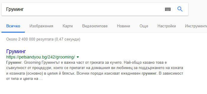 """SEO - на първо място в Google по """"груминг"""""""