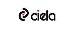 ciela - SEO услуги