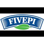 Fivepi - SEO оптимизация