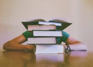 SEO учебник 4 - оптимистика