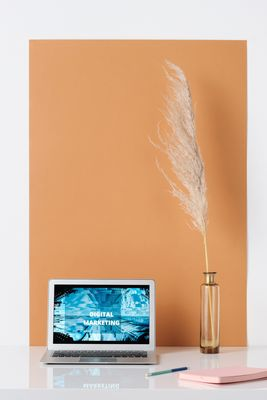 Онлайн реклама 24 - работа